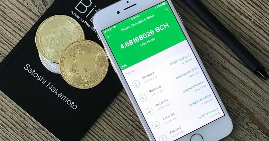 Noțiuni introductive despre cazinourile mobile Bitcoin